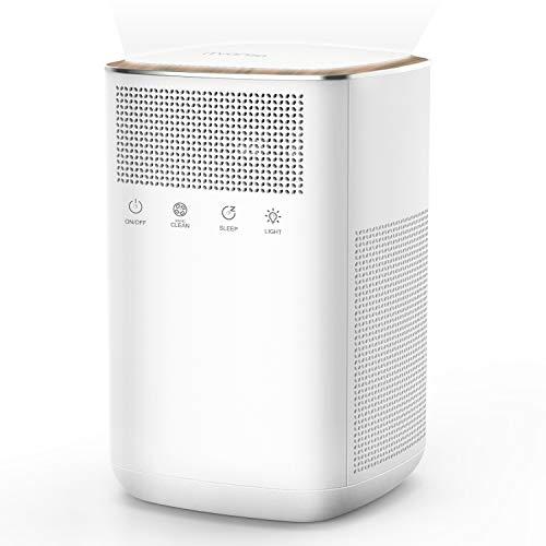 iTvanila Air Purifier